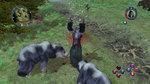 <a href=news_images_of_sacred_2-7763_en.html>Images of Sacred 2</a> - 9 images
