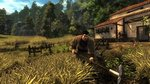 Bucolic images of Risen - 11 images - Xbox 360