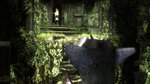 <a href=news_some_more_images_for_the_last_guardian-8062_en.html>Some more images for The Last Guardian</a> - 5 images