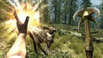 Screens of The Elder Scrolls V: Skyrim - 6 screenshots