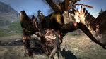 Dragon's Dogma: Griffin Screens - Images