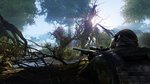 <a href=news_sniper_ghost_warrior_2_screens-12226_en.html>Sniper Ghost Warrior 2 Screens</a> - Images