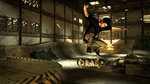 Screens for Tony Hawk's Pro Skater HD - Images