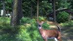 <a href=news_tgs05_elder_scrolls_oblivion_3_images-2010_en.html>TGS05: Elder Scrolls: Oblivion: 3 images</a> - 3 Xbox 360 images