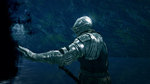 Dark Souls: Prepare to Die again - PC screens