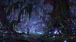 <a href=news_e3_the_elder_scrolls_online_screens-12947_en.html>E3: The Elder Scrolls Online screens</a> - Artworks