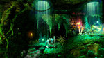 E3: Trine 2 coming to Wii U - E3 Screens