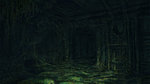 <a href=news_soma_brings_horror_underwater-15168_en.html>SOMA brings horror underwater</a> - Artworks