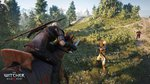 <a href=news_e3_the_witcher_3_fait_le_plein_d_images-15466_fr.html>E3: The Witcher 3 fait le plein d'images</a> - E3: Images