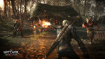 <a href=news_gc_the_witcher_3_en_images-15717_fr.html>GC: The Witcher 3 en images</a> - GC: images