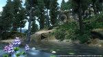 <a href=news_oblivion_3_images-2581_en.html>Oblivion: 3 images</a> - 3 images