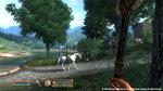<a href=news_oblivion_images-2649_en.html>Oblivion images</a> - 3 Xbox 360 images