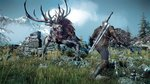 <a href=news_gsy_preview_the_witcher_3-16396_fr.html>GSY Preview : The Witcher 3</a> - Images