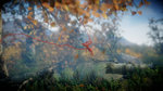 E3: Images