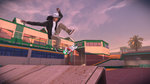 Tony Hawk's Pro Skater 5 is out - Gallery