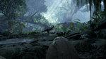 Back to Dinosaur Island: VR Demo - 5 screens