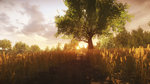 Everybody's Gone ot the Rapture (PC) - 13 resized images (1080p)