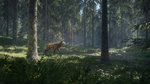Our videos of theHunter's closed beta - Official screenshots