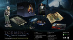 Torment: Tides of Numenera launching Feb. 28 - Collector's Edition / Day One Edition