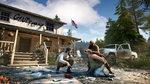 <a href=news_e3_far_cry_5_trailers-19221_en.html>E3: Far Cry 5 trailers</a> - E3: Images