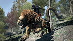 Dragon's Dogma to launch Oct. 3rd on PS4/X1 - 8 screenshots