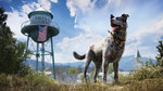 Gameplay de Far Cry 5 - 4 images
