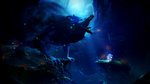 <a href=news_e3_ori_2_gorgeous_in_4k-20112_en.html>E3: Ori 2 gorgeous in 4K</a> - E3: screenshots