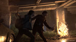 <a href=news_e3_tlou_part_ii_impresses_everyone-20156_en.html>E3: TLOU Part II impresses everyone</a> - E3: Images