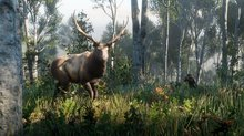 <a href=news_the_wildlife_in_red_dead_redemption_2-20441_en.html>The wildlife in Red Dead Redemption 2</a> - 6 screenshots