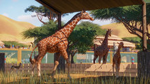 E3: New Youtube trailer of Planet Zoo - 12 screenshots