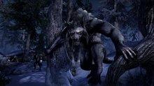 Les terres de Skyrim s'invite dans ESO: Greymoor  - Images
