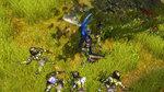 <a href=news_images_of_sacred_2-4522_en.html>Images of Sacred 2</a> - 5 images