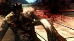 <a href=news_pc_images_of_dead_island-4916_en.html>PC images of Dead Island</a> - 4 PC images