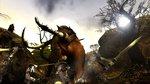Images ok Age of Conan: Hyborian... - 10 images