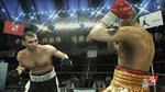 <a href=news_prizefighter_punches_with_images-5811_en.html>Prizefighter punches with images</a> - First Xbox 360 Images