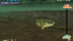 Bass Fishing bites the fishhook - 9 Images