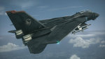 DLC for Ace Combat 6 - January DLC