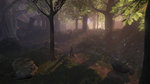 <a href=news_images_of_fable_2-5997_en.html>Images of Fable 2</a> - GDC images
