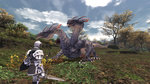 FFXI: 2008 Edition announced - 21 Images