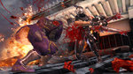 Images and videos of Ninja Gaiden 2 - Castle Of The Dragon images