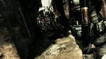 <a href=news_images_et_trailer_hd_de_re5-6590_fr.html>Images et trailer HD de RE5</a> - Images Gamers Day