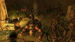 <a href=news_images_of_sacred_2-6634_en.html>Images of Sacred 2</a> - 10 PC Images