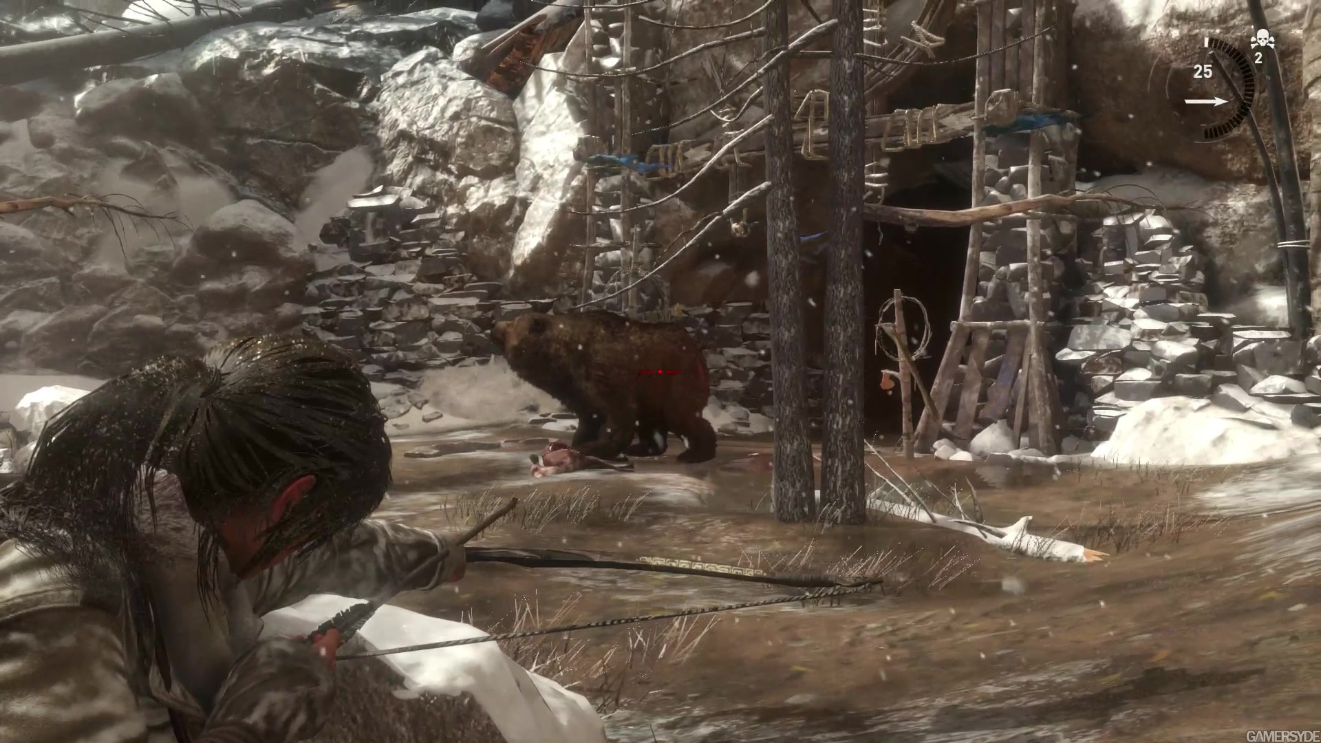 how to kill bear rise of the tomb raider