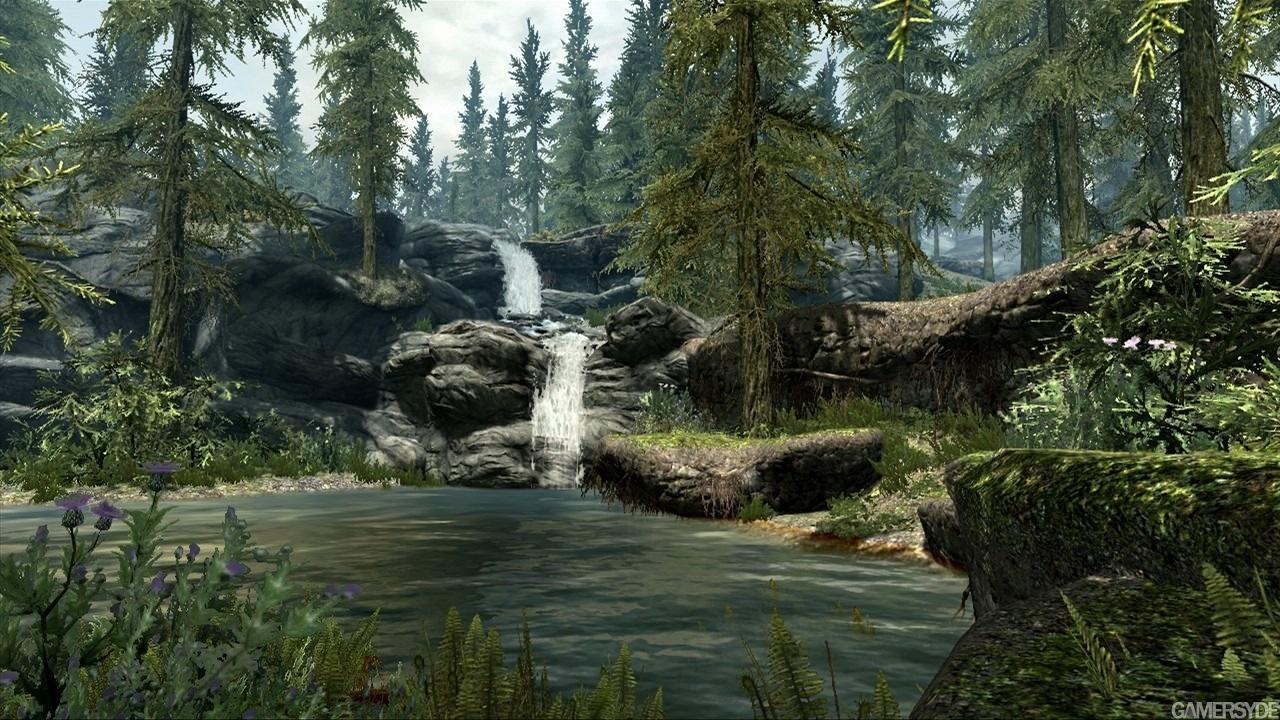 http://images.gamersyde.com/image_the_elder_scrolls_v_skyrim-14663-2190_0004.jpg