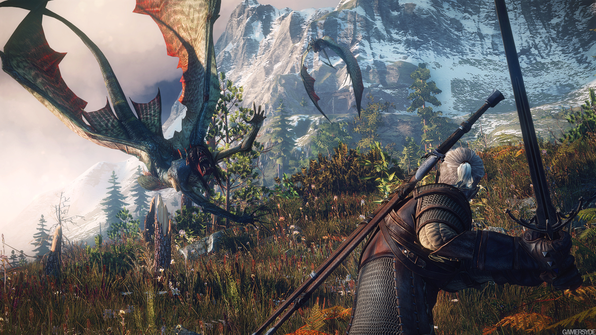 Witcher 3 Image_the_witcher_3_wild_hunt-22370-2651_0009