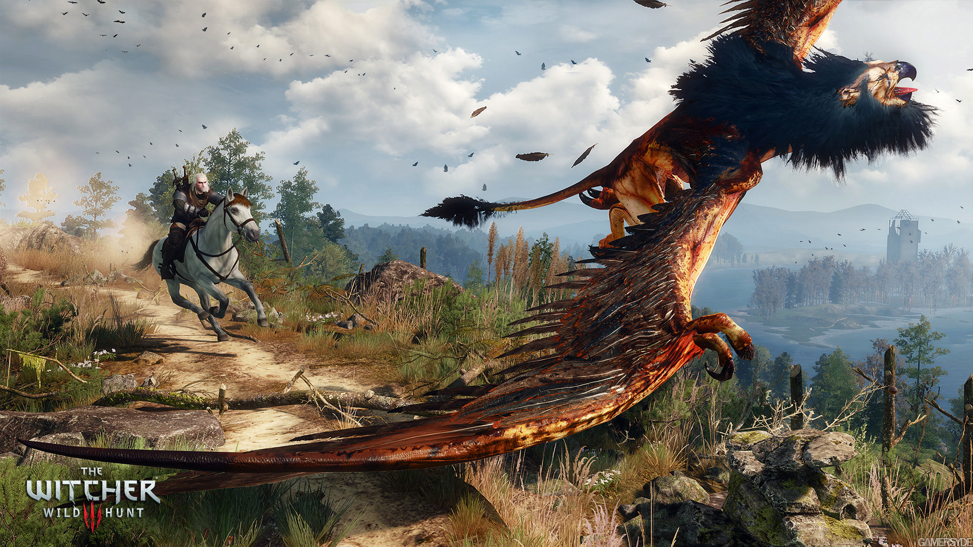 image_the_witcher_3_wild_hunt-27433-2651