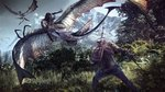 http://images.gamersyde.com/thumb_image_the_witcher_3_wild_hunt-22509-2651_0003.jpg