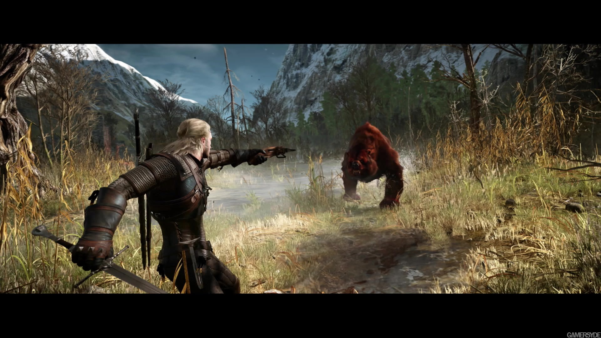 http://images.gamersyde.com/image_the_witcher_3_wild_hunt-26388-2651_0012.jpg